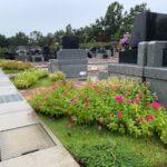 雨の日のお墓参り。