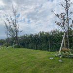 樹木供養塔の樹木。